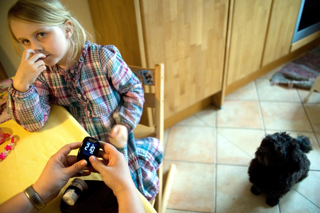 Das Leben mit einem Diabethikerwarnhund. Luisa hat Diabetes. Um mit der Krankheit besser leben zu können bekam sie von ihren Eltern einen Diabethikerwarnhund. Der Hund erkennt schon am Atemgeruch wenn der Blutzuckerspiegel sinkt. Ohne ihn müsste alle 10 Minuten gemessen werden. Nachdem Bolle durch Bellen eine Unterzuckerung angekündigt hat, misst die Mutter Luisas Blutzucker mit dem Blutzuckermessgerät. Sie ist mit einem Wert von 210 Überzuckert. Eigentlich sollte er zwischen 70-120 liegen.