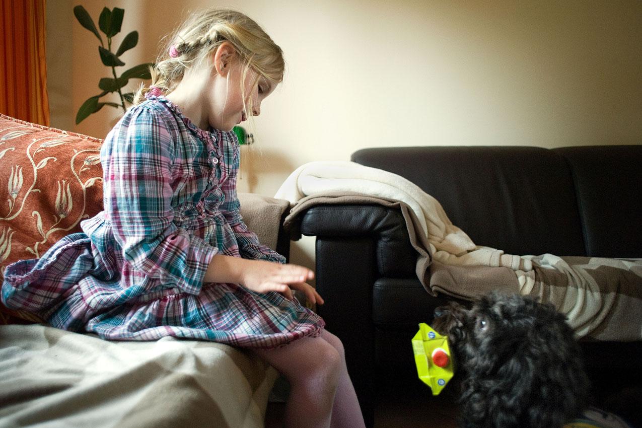 Das Leben mit einem Diabethikerwarnhund. Luisa hat Diabetes. Um mit der Krankheit besser leben zu können bekam sie von ihren Eltern einen Diabethikerwarnhund. Der Hund erkennt schon am Atemgeruch wenn der Blutzuckerspiegel sinkt. Ohne ihn müsste alle 10 Minuten gemessen werden. Luisa sitzt unterzuckert im Wohnzimmer. Bolle hat eine Päckchen Fruchtsaft im Maul. Im Falle einer Unterzuckerung bringt Bolle Luisa zuckerhaltige Getränke.