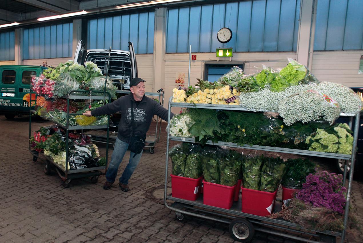 7. Mai 2010 Uhrzeit: 5.56h Foto: Anja Cord - Für seinen Blumenladen in Recklinghausen hat Volker Steiner die verschiedensten Schnittblumen eingekauft. Neben unterschiedlichen Rosensorten, Hortensienblüten und Lilien, braucht er auch Zierblatter und das klassische Schleierkraut, um gebunden Sträuße zu gestalten.