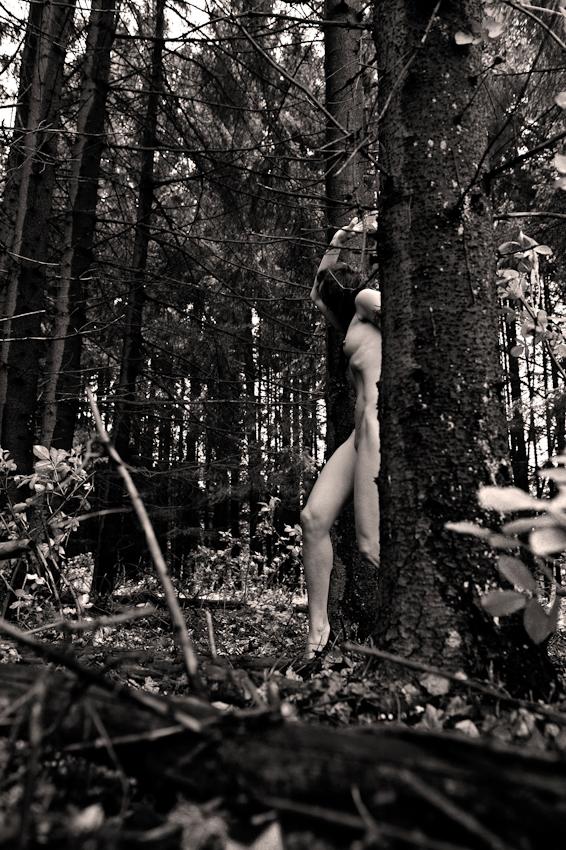 Der siebte Mai ist für mich Anlass gewesen der kommerziellen Fotografie eine freie Arbeit entgegenzustellen. Mit meiner Muse bin ich in einen Fichtenwald in Schleswig-Holstein/ Kisdorferwohld gefahren, um meinem inneren Gefühl folgend Wald im Zusammenspiel mit Akt zu verbinden. Den zarten Körper des Modells mit den Bäumen und deren  Aste zu verschmelzen , die rauhe Rinde mit der glatten Haut verbinden zu lassen und die Form der Baume im Körper aufzunehmen. Das Wechselspiel mit unbeweglichen Stammen und dem beweglichem Körper, die perfekte Verschmelzung zwischen Mensch und Natur. Die Freie Arbeit gibt  mir für meine kommerzielle Fotografie Energie und immer wieder neue Sichtweisen, einen neuen Blick auf den alltäglichen Umgang mit der Fotografie.