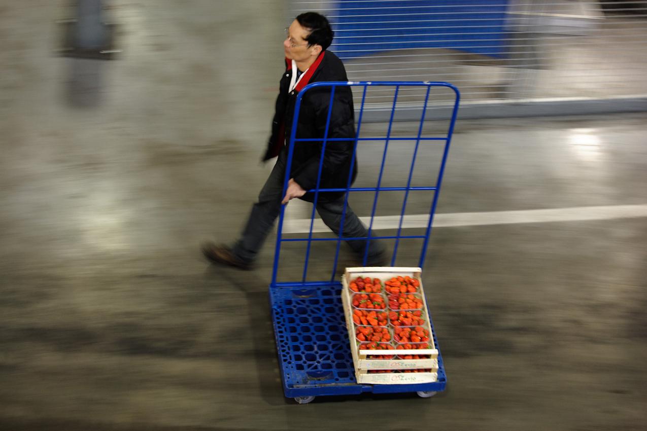 7 Mai 2010, Waehrend die Hauptstadt noch schlaeft herrscht Hochbetrieb im Fruchthof des Berliner Grossmarktes