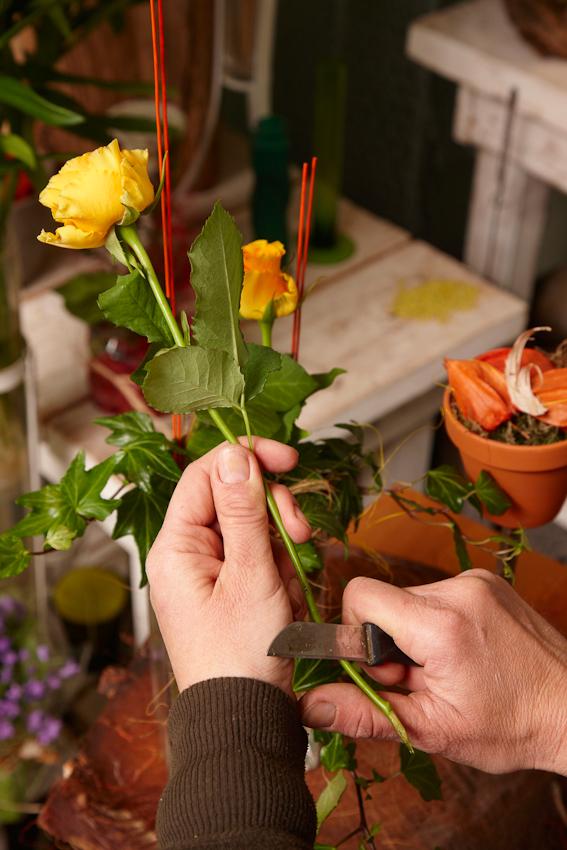 Bevor Floristin und Diplomkauffrau Christina Riechers (43) aus Reinfeld die vielen vorbestellten Muttertagssträuße binden kann, mussen die Rosen angeschnitten und entdornt werden.