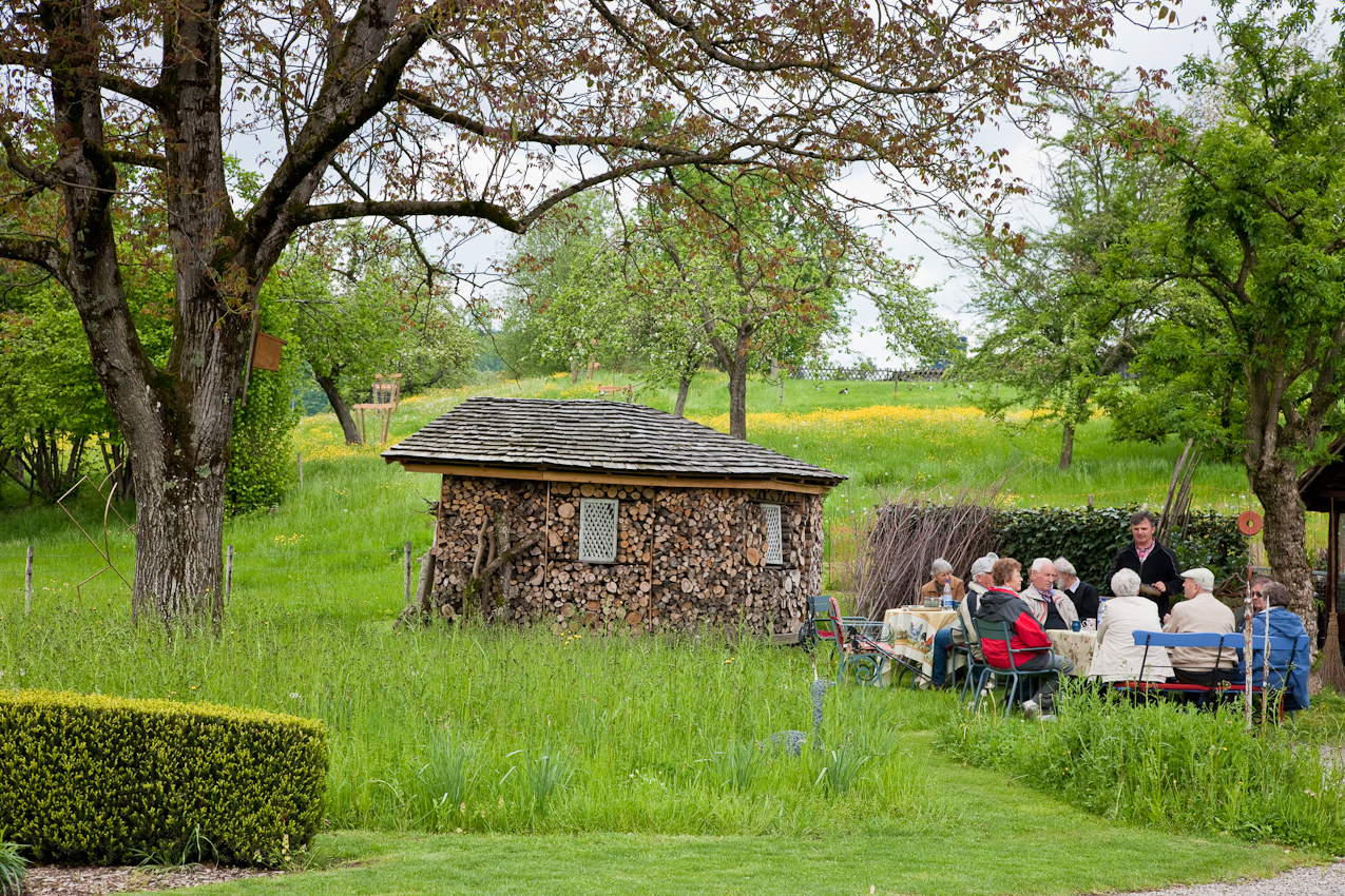 Mein Thema: Frühlingsgarten in Südbayern. Die einzige Ecke in Südbayern, in der es an diesem 7. Mai nicht regnet soll Lindau sein. Ich setze mich ins Auto und fahre zu einem Garten in  Lindau am Bodensee. Eine Gruppe schwäbischer Maurermeister mit Frauen aus Tübingen ist zu Besuch, um den Garten zu besichtigen. Als ich am Nachmittag ankomme, trinken sie schon gemütlich  Tee. Ich erfahre, dass sie sich einmal im Jahr  zu einem Ausflug treffen anlässlich der Meisterprüfung im Jahr 1968 - also seit 42 Jahren.