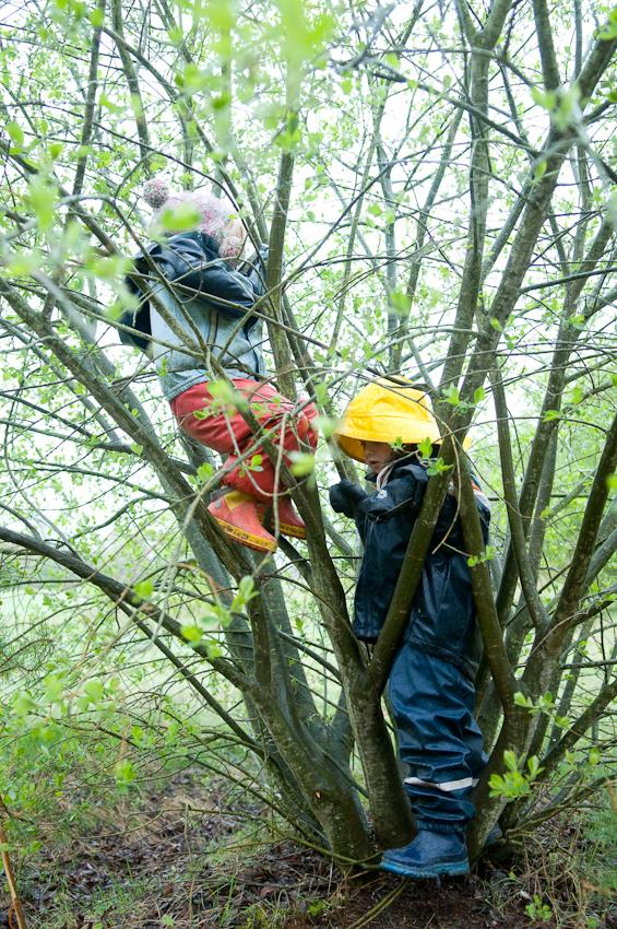 9:00 Uhr. Waldkindergarten Buxtehude. Klettern darf nur, wer auch alleine auf den Baum rauf kommt. Lisa und Mailin versuchen es erst mal mit einem Strauch. Doch auch der hat seine Tücken, wie Lisa kurz darauf feststellt, als sie in einer Astgabel feststeckt. Hilfe naht: die Erzieher sind immer in Rufweite.