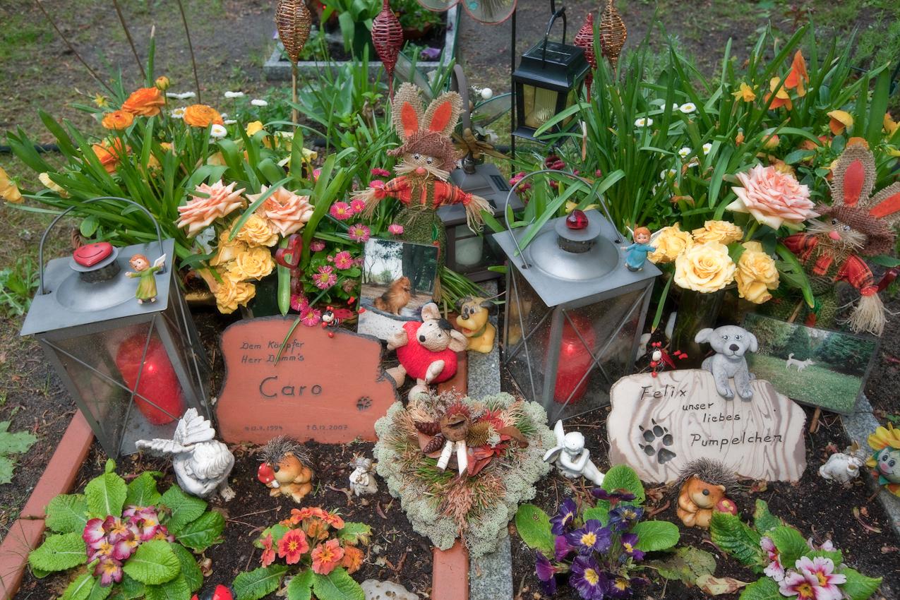 Hundegrab auf dem privaten Baerliner Tierfriedhof in Steglitz, Bismarkstr. 52.  Der kleine Tierfriedhof wurde am Rande des Friedhofes Steglitz von Karin und Richard Mitschke 2007 errichtet.
