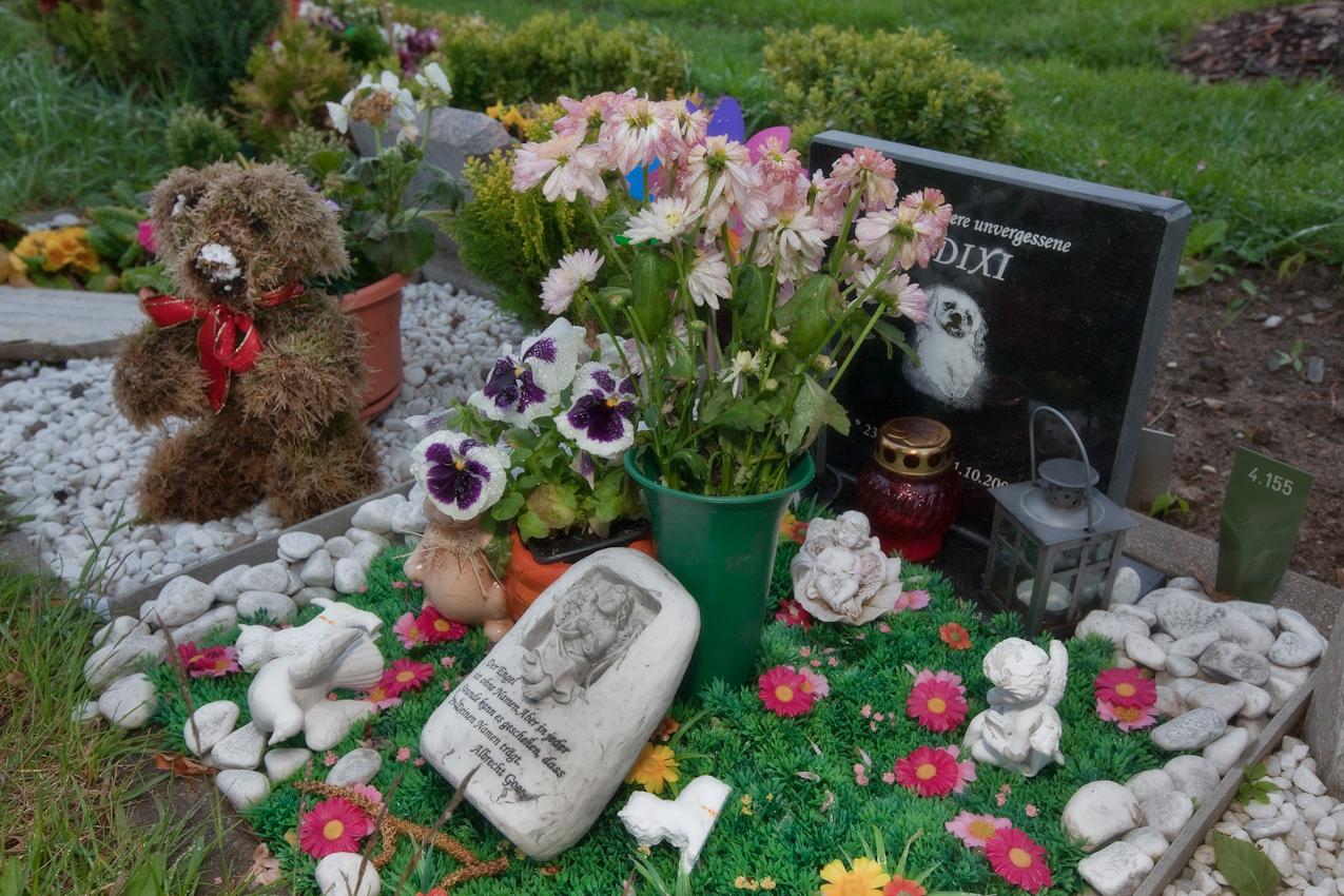 Hundegrab auf dem Tierfriedhof in Berlin Hohenschoenhausen Falkenberg angeschlossen an das Tierheim Berlin. Der Tierschutz-Verein für Berlin errichtete eines der größten und modernsten Tierheime  dieser Art weltweit.