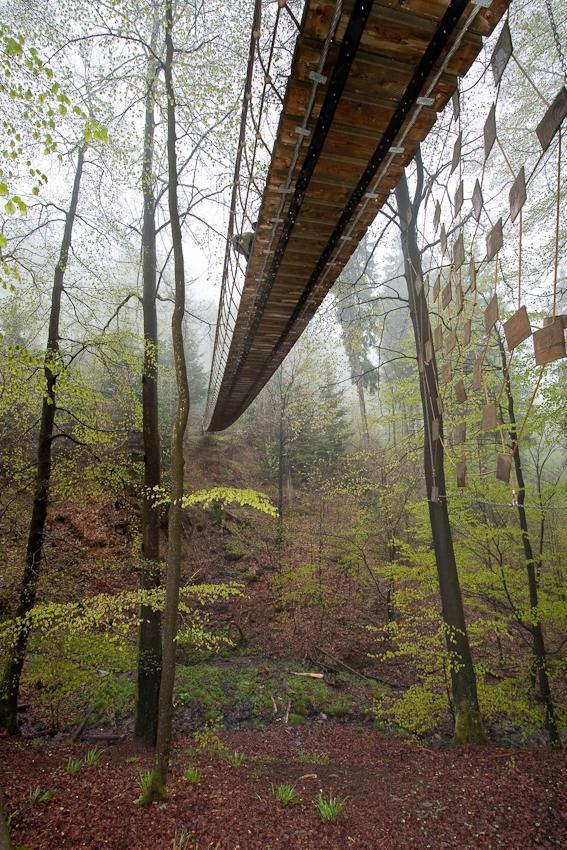 Die Hängebrücke bei Schmallenberg-Schanze ist eine der Hauptattraktionen auf dem Rothaarsteig - dem Streckenwanderweg im Sauerland von Dillenburg nach Brilon. Von der Brücke oberhalb des Latroptales aus sieht der Wanderer rechts zwischen den Bäumen ein Spinnennetz, das die vielfältigen Beziehungen zwischen Tieren und Pflanzen im Ökosystem Wald darstellt.  - Dieses Bild wurde am 07.05.2010 um 19:27:19 Uhr in Schmallenberg-Schanze (Sauerland, Deutschland) aufgenommen.