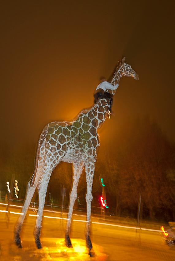 """Die Skulptur """"Mann auf Giraffe"""" von Stephan Balkenhol zeigt einen jungen Burschen, der auf einer Giraffe reitet. Es gab schon immer Gerüchte, das diese Skulptur nach Anbruch der Dunkelheit ein Eigenleben führt und sich manchmal fortbewegt."""