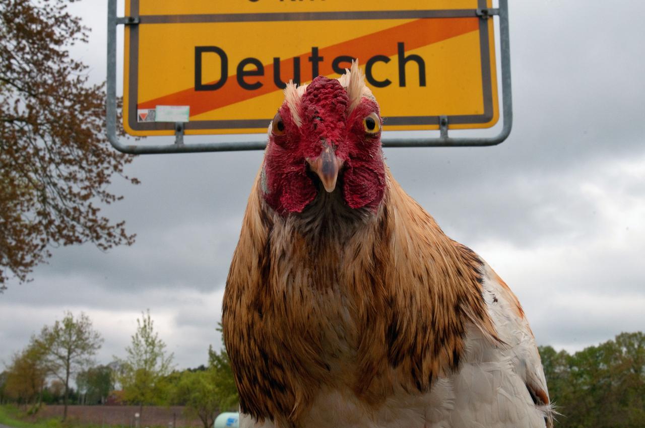 Berta am Ortsausgangsschild des kleinen Ortes Deutsch in Sachsen-Anhalt.