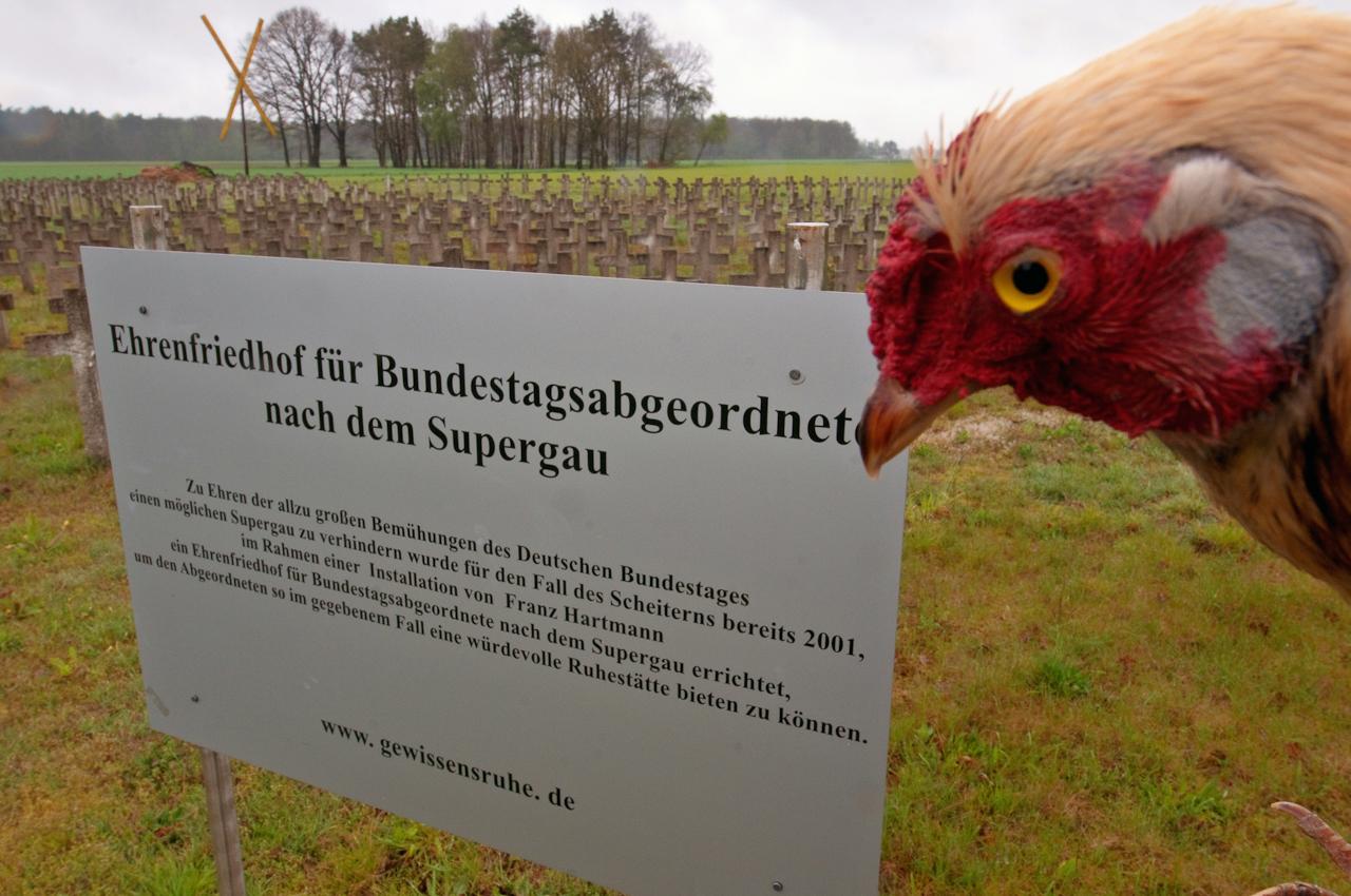 Projekt: Gewissensruhe. Ehrenfriedhof für Bundestagsabgeordnete nach dem Supergau in Klein Gusborn im Landkreis Lüchow-Dannenberg. Installation von Franz Hartmann.