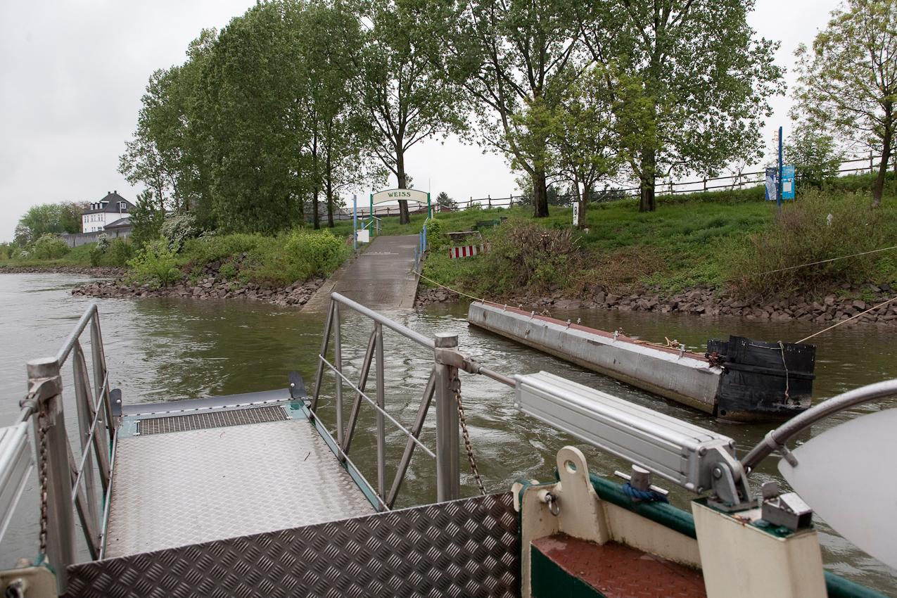 Kurz vor dem Anlegen der Fähre zwischen Köln Weiß und Köln Zündorf am Weißer Ufer.