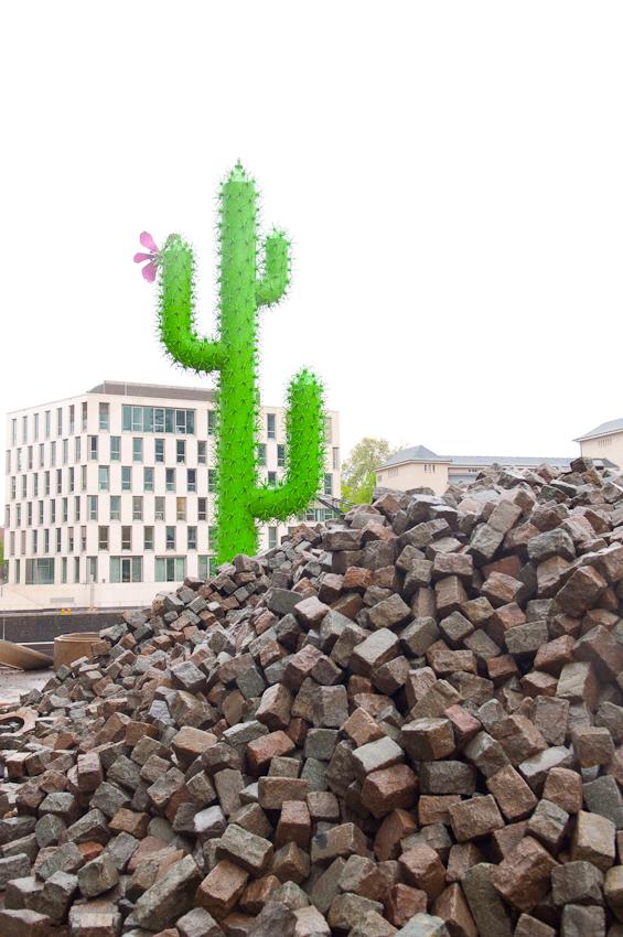 Der Kaktus ist Werbeträger einer Baufirma am Rheinauhafen Köln. Er befindet sich zwischen dem zweiten und dritten, noch im Bau befindlichen, Krahnhaus. Aufgenommen um 08:24 Uhr.