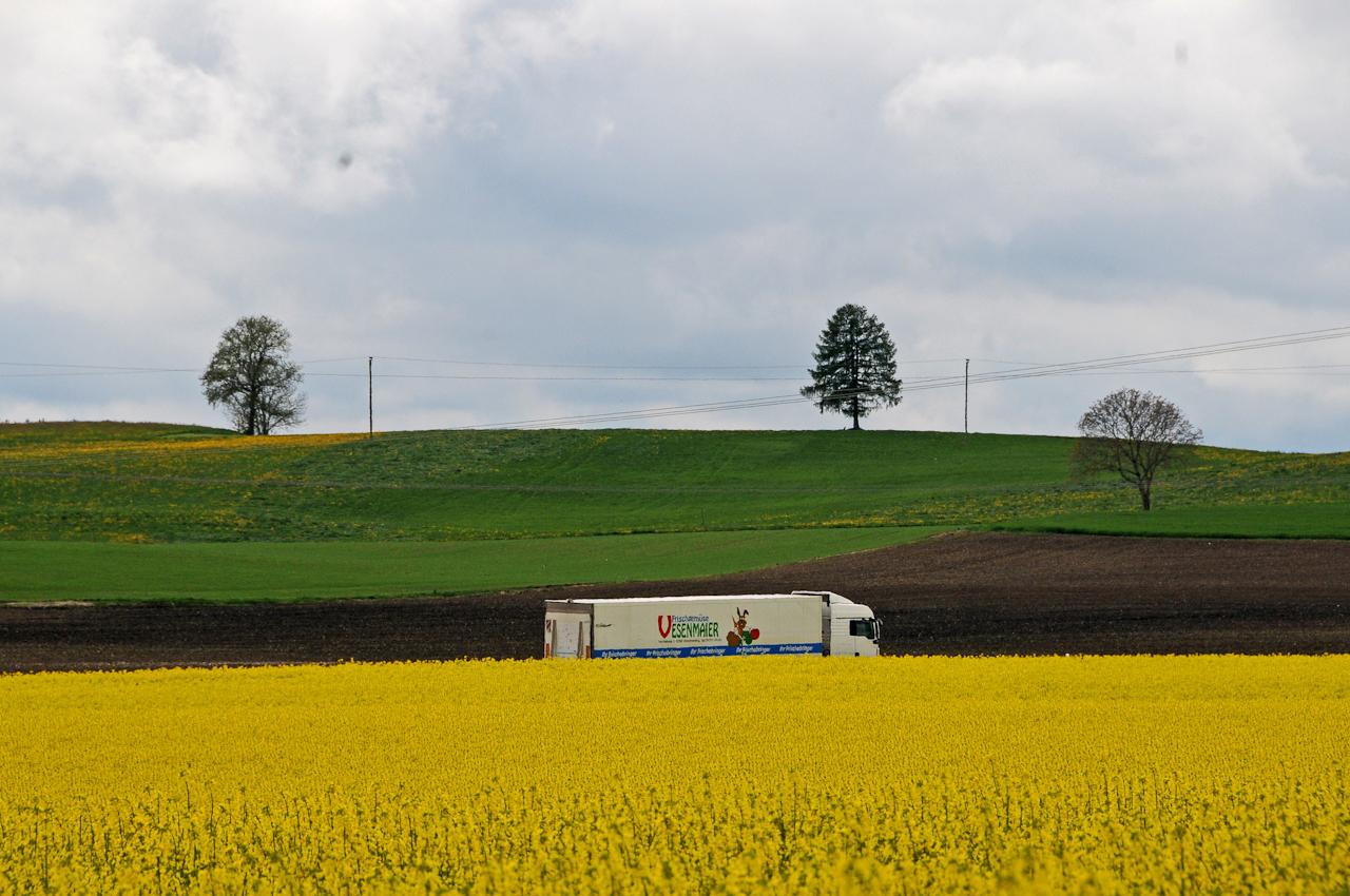 Ein Lastwagen fährt am Nachmittag auf der B 304 zwischen Rapsfeldern und gepflügtem Acker. Eine grüne Anhöhe mit zwei hohen Bäumen im Hintergrund.