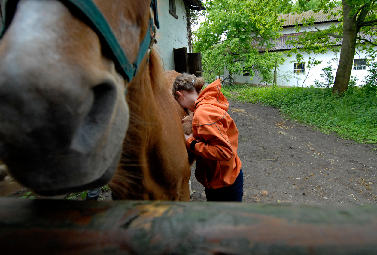 Auf dem Reiterhof sind nur Mädchen anzutreffen und was sie am meisten genießen, ist die selbstverständliche Nähe zu den Pferden.